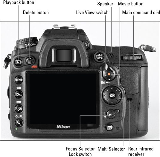 Nikon d7000 cheat sheets httpdummieshow tocontent nikon d7000 cheat sheets httpdummieshow tocontentnikon d7000 for dummies cheat sheetml fandeluxe Gallery