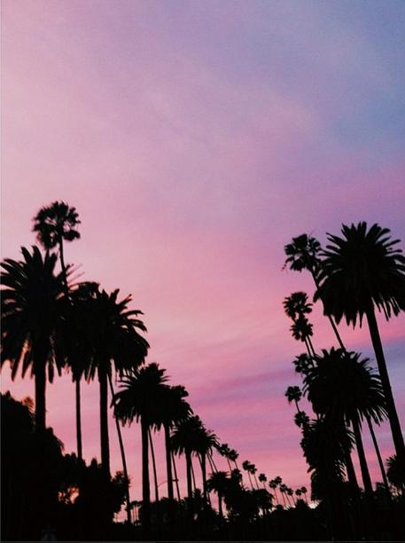 Sunset on Sunset Blvd Beverly Hills Hotel Beverly hills