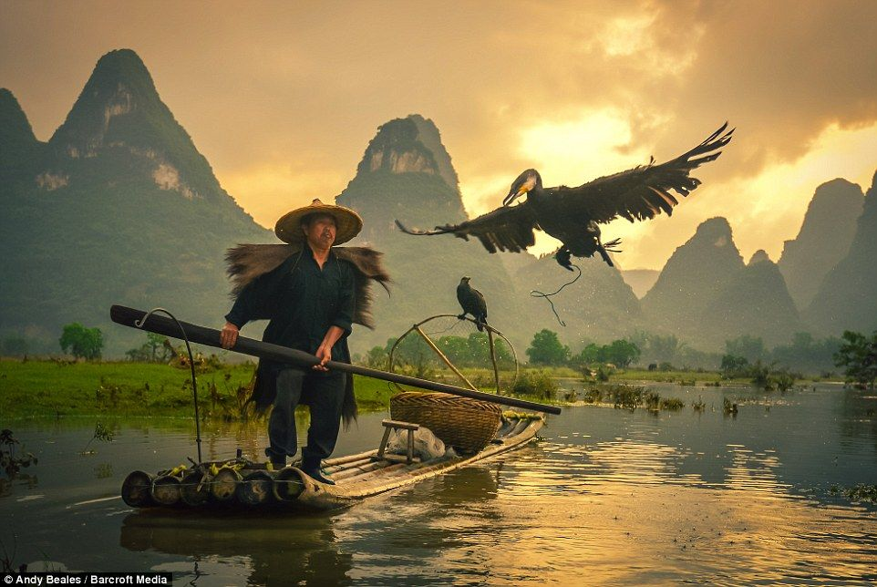Meet the villagers keeping the tradition of cormorant