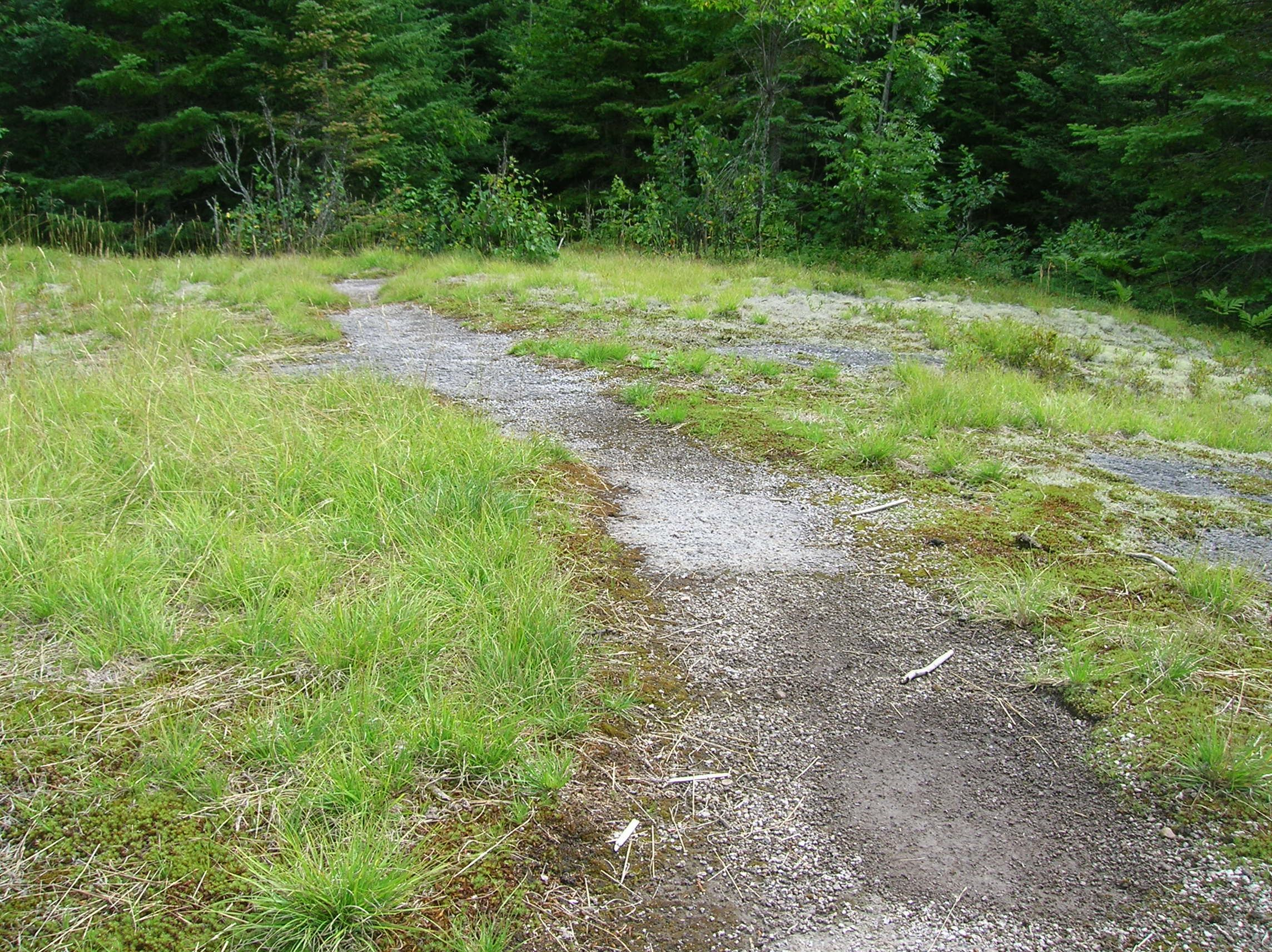 Superior Hiking Trail, MN