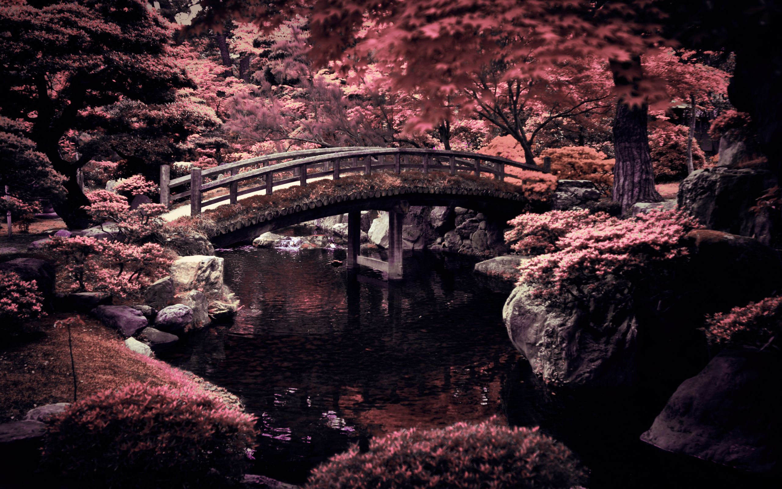 Photo Collection Serene Desktop Backgrounds Japanese