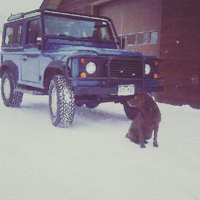 #defender #defender90 #defender110 #defenderitalia #heritage #defender_life_style #defender_for_ever #offroad #4x4 #landrover #landlovers #landroveritalia #searchandrescue #landroverdefender #picoftheday #defenderlove #td5 #td4 #ilovelandrover #leggenda #offroaditalia #offroadlife #extreme #dogs #puppy #beagle #lagotto #dogstagram #puppylove #defenderdogs @harwoodrealestate by _defenderdogs_ #defender #defender90 #defender110 #defenderitalia #heritage #defender_life_style #defender_for_ever…