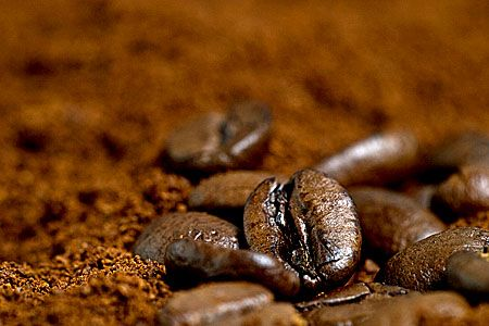 How to Store Your Coffee Beans