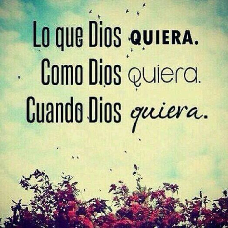 Foto Para Perfil Whasapp Frases Pinterest Dios Frases Y