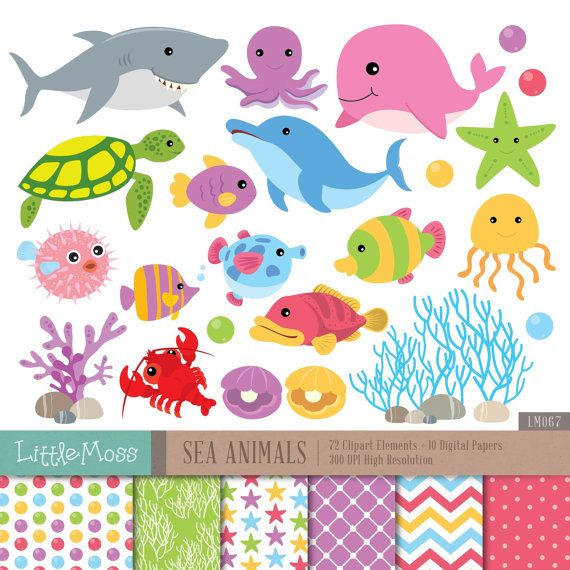 Sea Animals Digital Clipart And Papers Under The Sea Clipart Etsy Digital Clip Art Clip Art Under The Sea Clipart