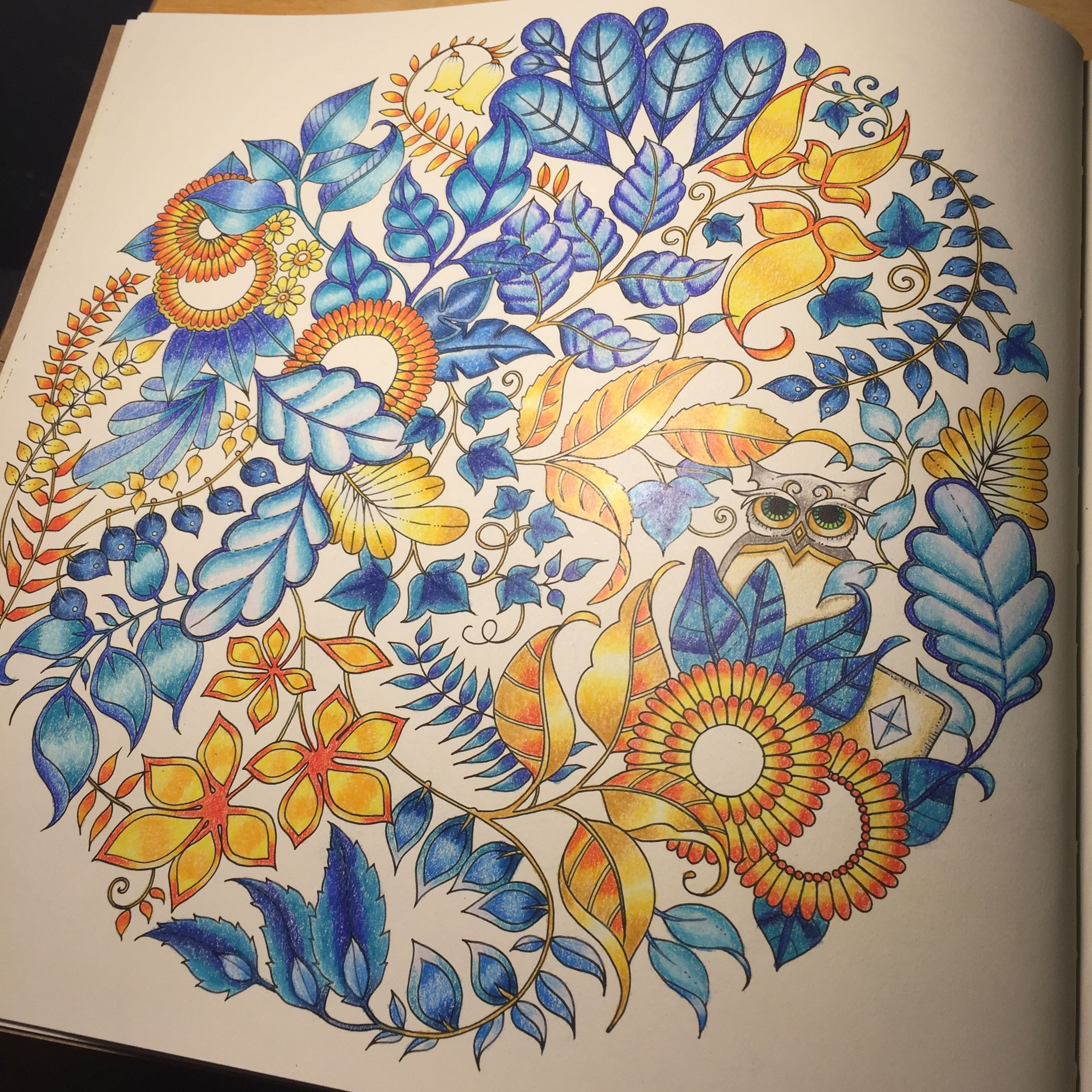 Enchanted Forest Adult Coloring Book By Johanna Basford Inspiration From Peta Hewit Prismacolor Coloredpencil