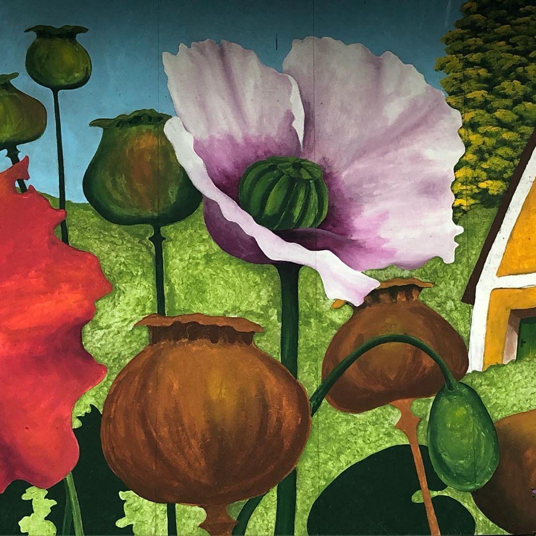 Armschlag Gemalde Malerei Motive Armschlagmohndorf Flowers Blumen Mohnfeld Mohnblume Mohnblumen Mohnblumenfelder Waldviertel 4tel I Art Painting