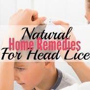 Listerine Kills Head Lice Treatment #headlicetreatment Listerine Kills Head Lice Treatment | HubPages #headlicetreatment Listerine Kills Head Lice Treatment #headlicetreatment Listerine Kills Head Lice Treatment | HubPages #headlicetreatment