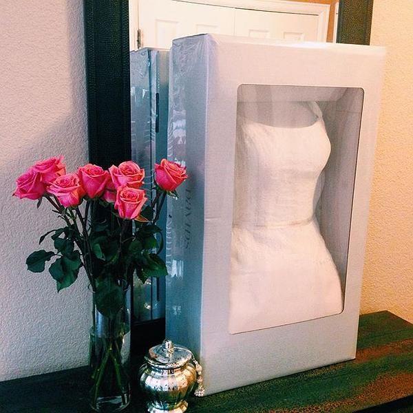 David S Bridal Wedding Gown Preservation Kit Davids