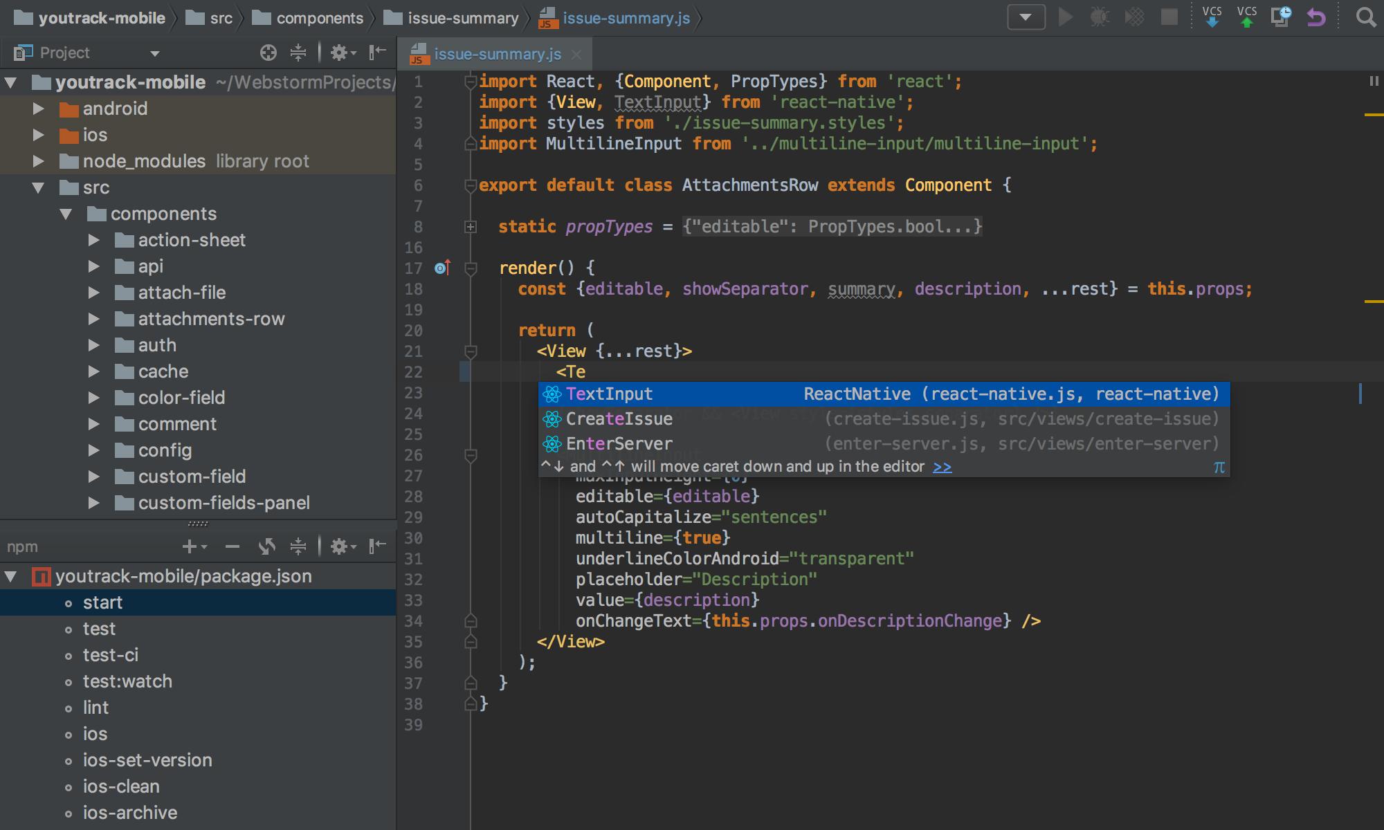 WebStorm   Computing and Web Design/ Development   Integrated