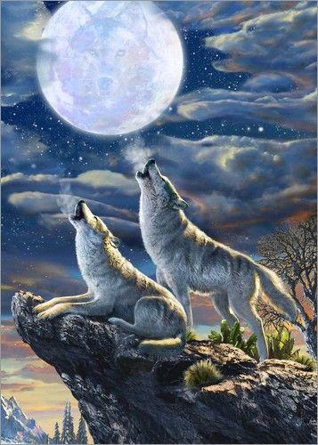 Photo of Adrian Chesterman – Jaulende Wölfe bei Mitternacht