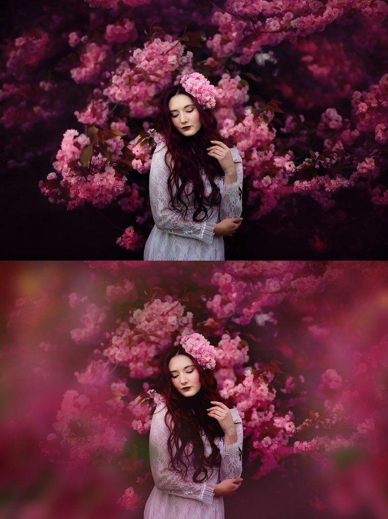 Shooting Through Blossom Overlays Kimla Designs Quality Editing Tools For Creative Photographers Ph Photoshop Overlays Photoshop For Photographers Photoshop