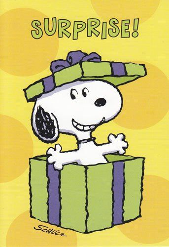 Amazon Com Greeting Card Birthday Peanuts Surprise Office Products Snoopy Birthday Snoopy Snoopy Pictures
