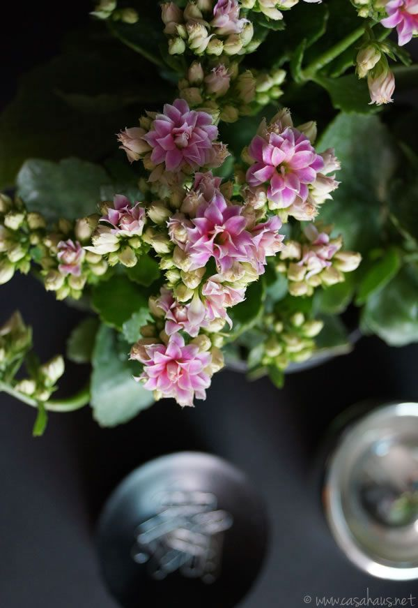 Flowers in the office | Casa Haus