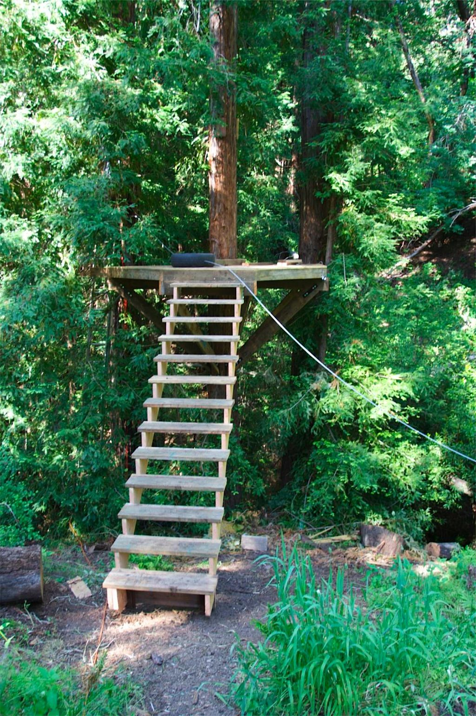 IMG_2357 (1024×1540) | Treehouse/zipline | Pinterest | Play Houses,  Treehouses And Treehouse