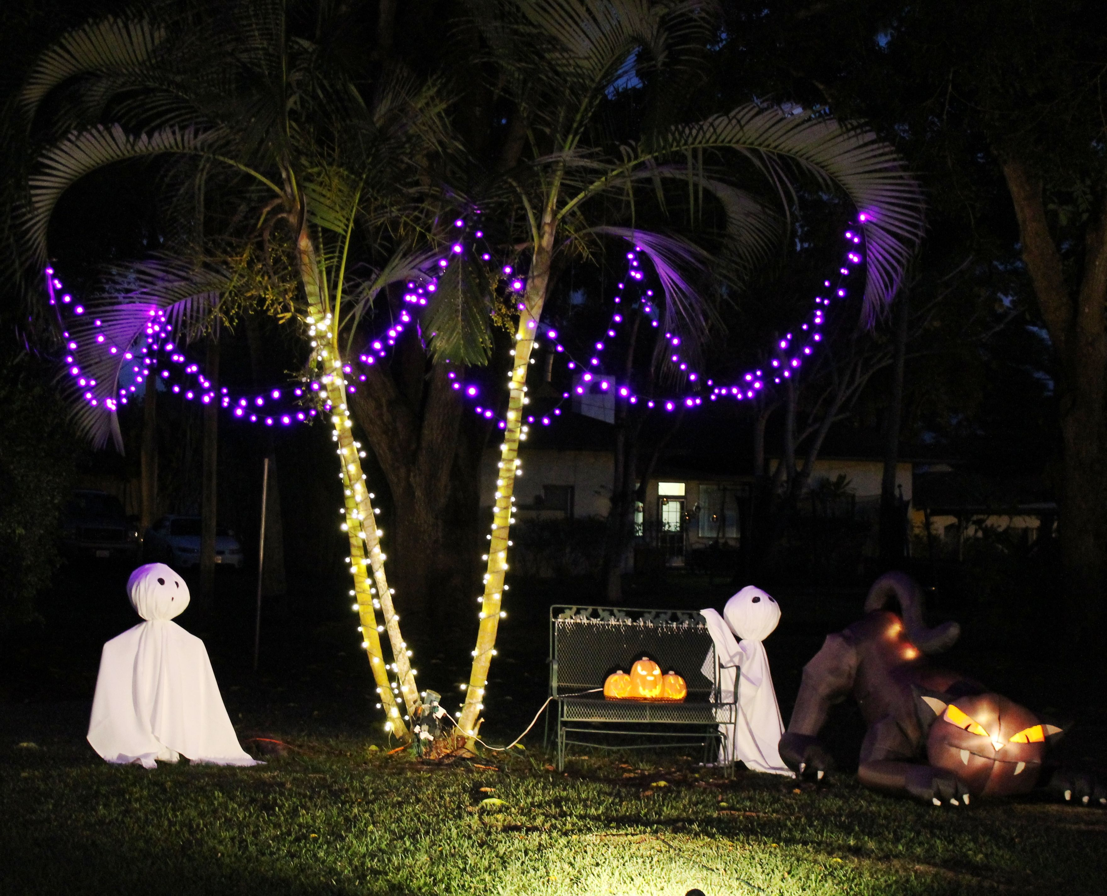 halloween decorations palm tree hawaiian style ghosts with cat under lighted hawaiian palm tree