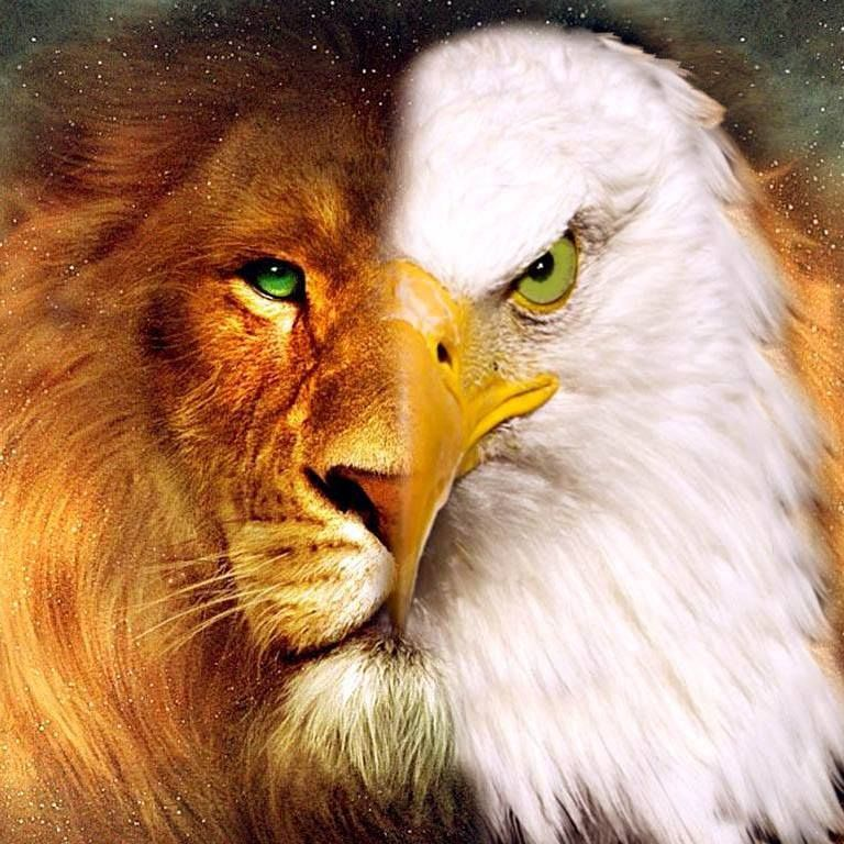 Eagle and Lion of Judah blended painting. EL CARACTER DE DIOS ...