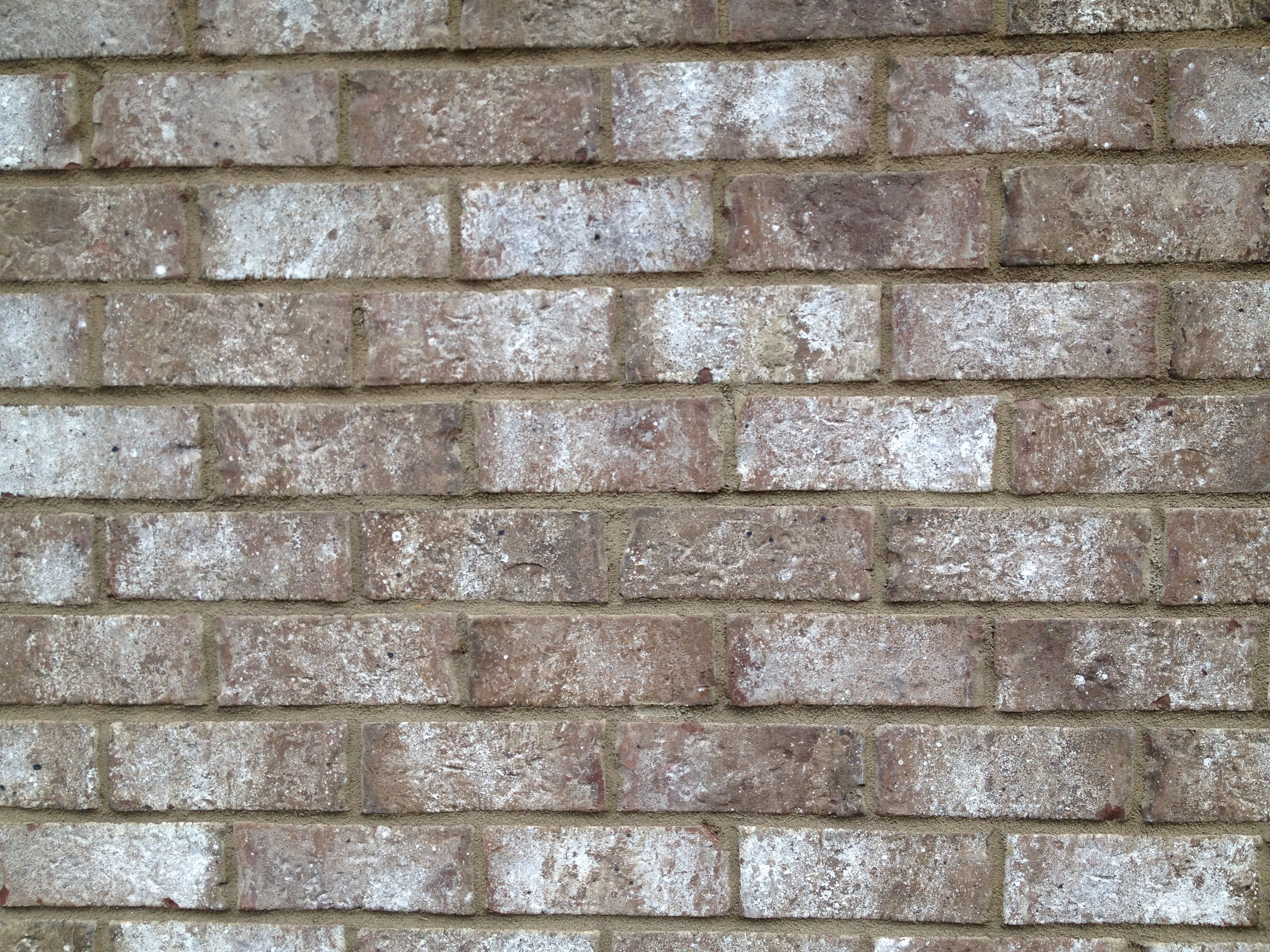 Stone chase brick  Light buff mortar