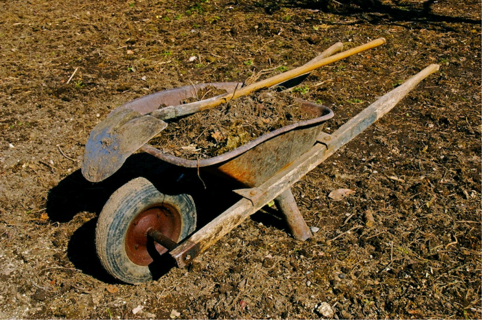 wheelbarrow.png (1646×1094)   Garden   Pinterest