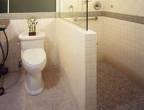simple shower design. Walk-In Shower Remodel Pictures | Walk In For Modern Bathroom Simple Bethroom Design R