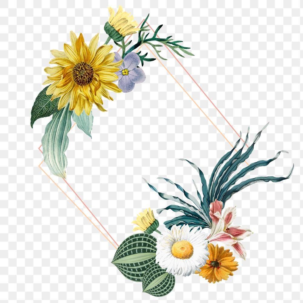 Gold Frame Png Vintage Floral Style Free Image By Rawpixel Com Sasi In 2020 Flower Illustration Vintage Floral Style Vintage Floral