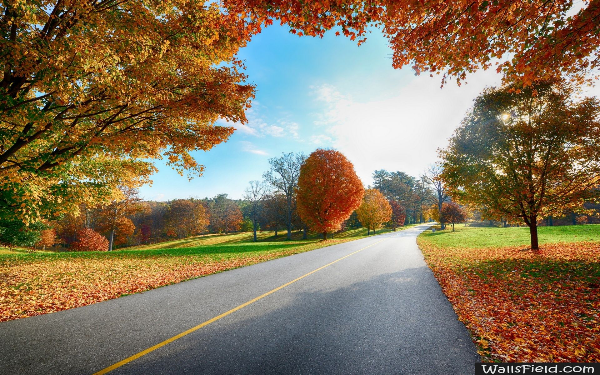 Autumn Trees With Images Scenery Wallpaper Landscape