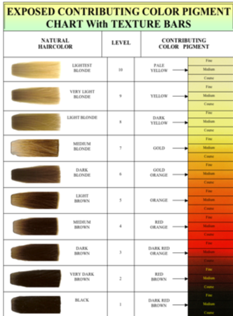 aveda hair color chart hair color wheel pin by jamez smith on cosmetology in 2019 hair color