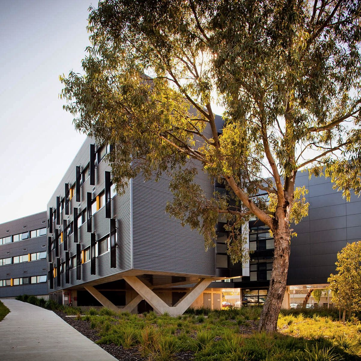 Deakin University Student Residences - Waurn Ponds Campus in Geelong on college application draft, college application template, college application checklist, college application examples, college common application print, college application cv, college graduation rates us chart, college application app, college financial aid, college application service, college application presentation, college application for harvard university, college application process, college application application, college application organization, college resume, college application letter, college application pdf, college application print out, college application report,
