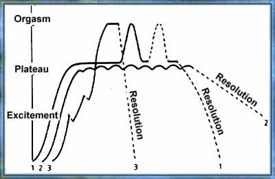 Masters and johnson human sexual response cycle