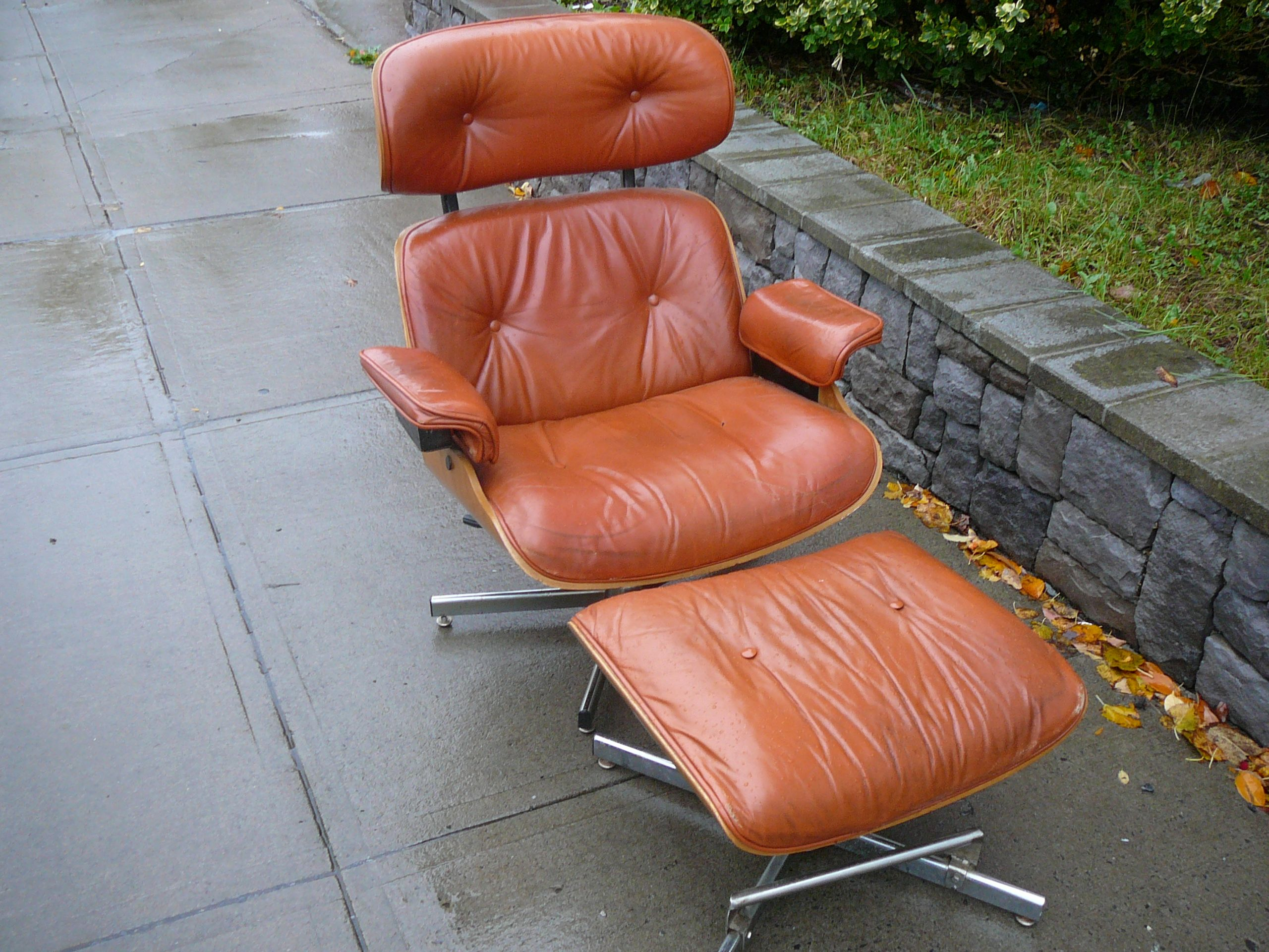 Italian Mid Century Lounge Chair By Cafemo With Images Mid