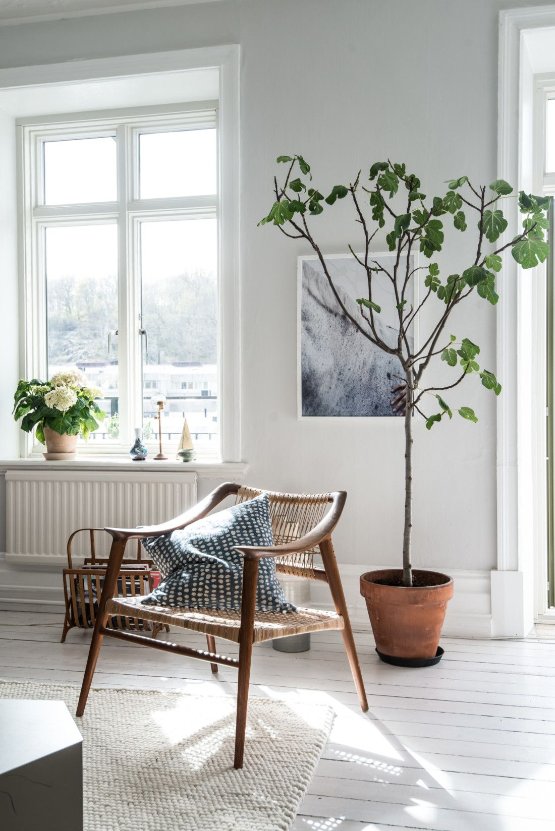 indoor plants, tiny tree, wooden arm chair, minimalist home, cozy ...