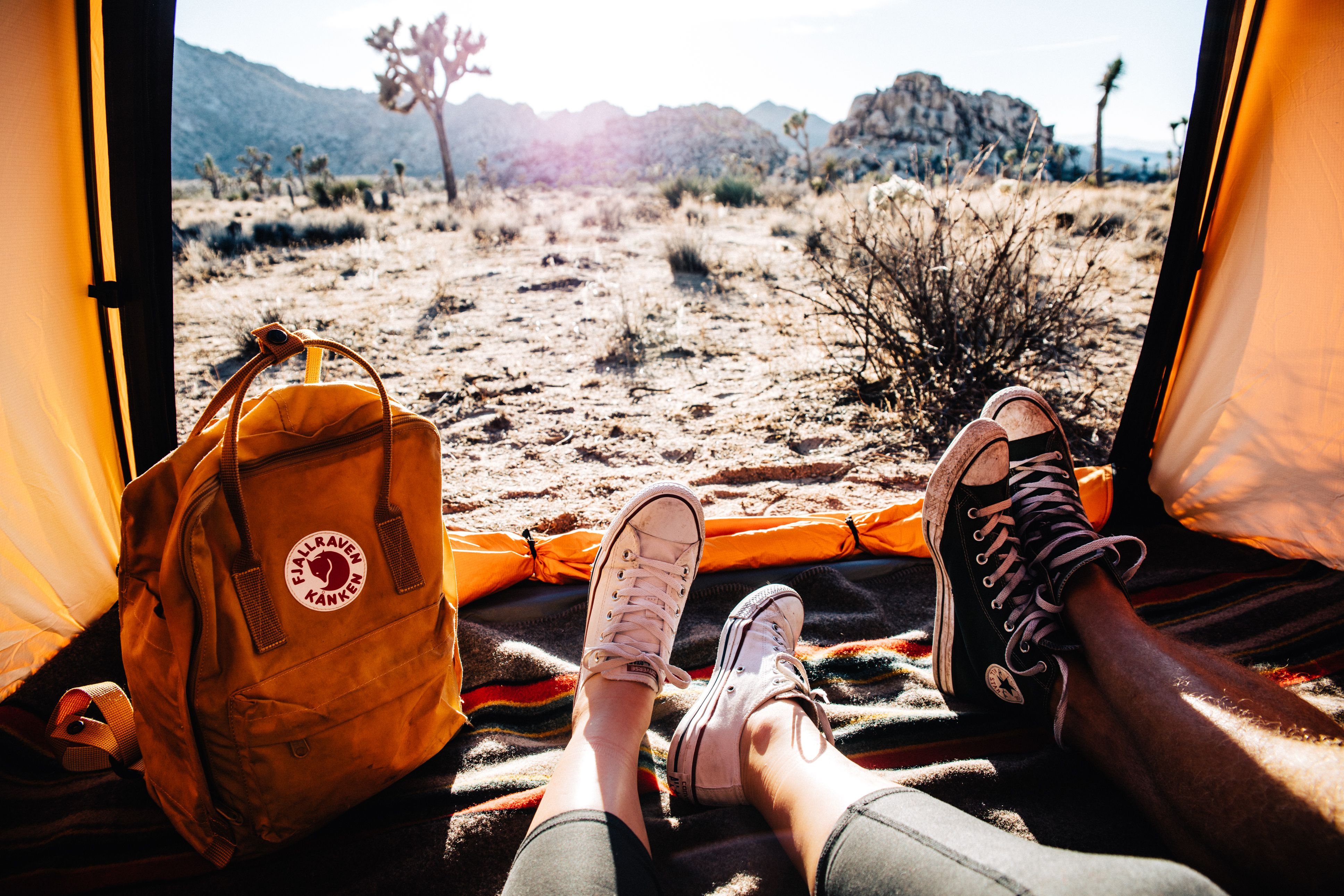How to Camp in Joshua Tree National Park for Free | Joshua ...