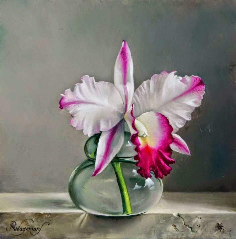 Maher Art Gallery Pieter Wagemans Belgian Artist Peinture