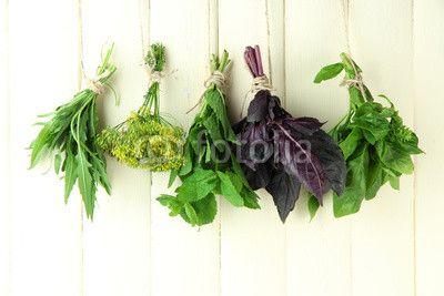 picture for backsplash Fresh herbs on wooden background