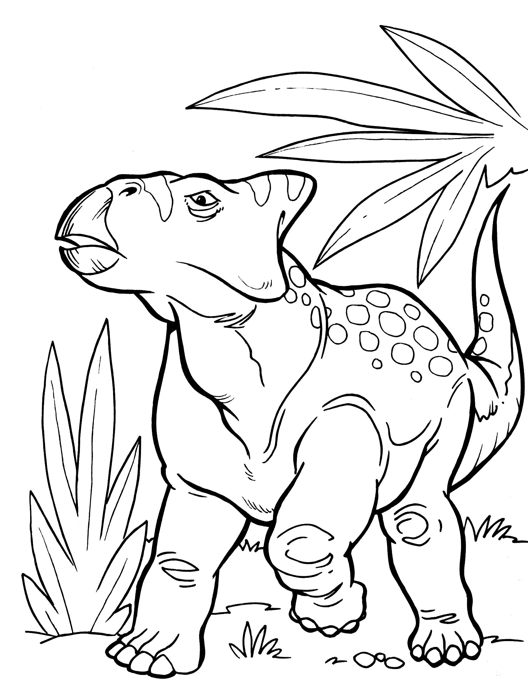 Dinosaur Coloring Pages Dinosaur Coloring Pages Coloring Pages Infinity Drawings