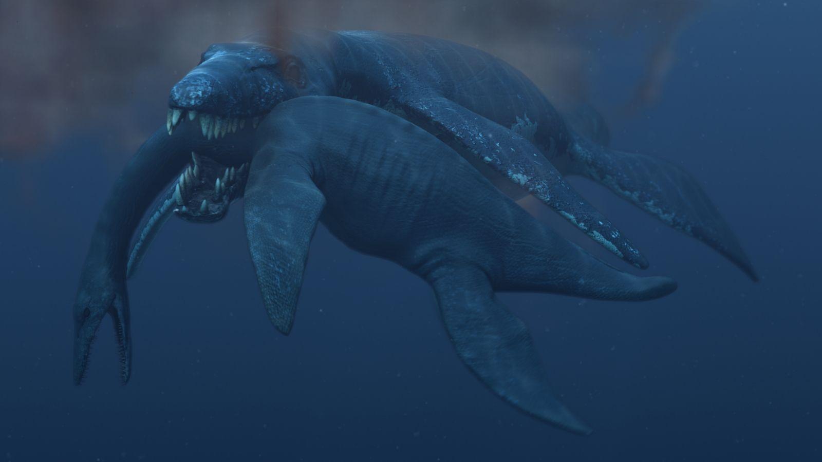 32++ Pliosaurus funkei information