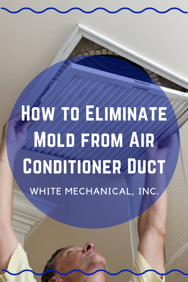 How to Eliminate Mold from Air Conditioner Duct Air