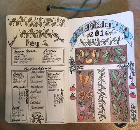 Garden Planner In Bullet Journal With Beautiful Illustrations