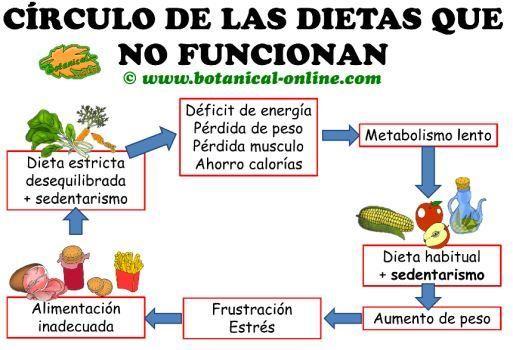 Nuestro organismo es sabio, así que saltarse comidas o dietas muy restrictivas pueden producir el efecto contrario. Mira el infografía de FDB