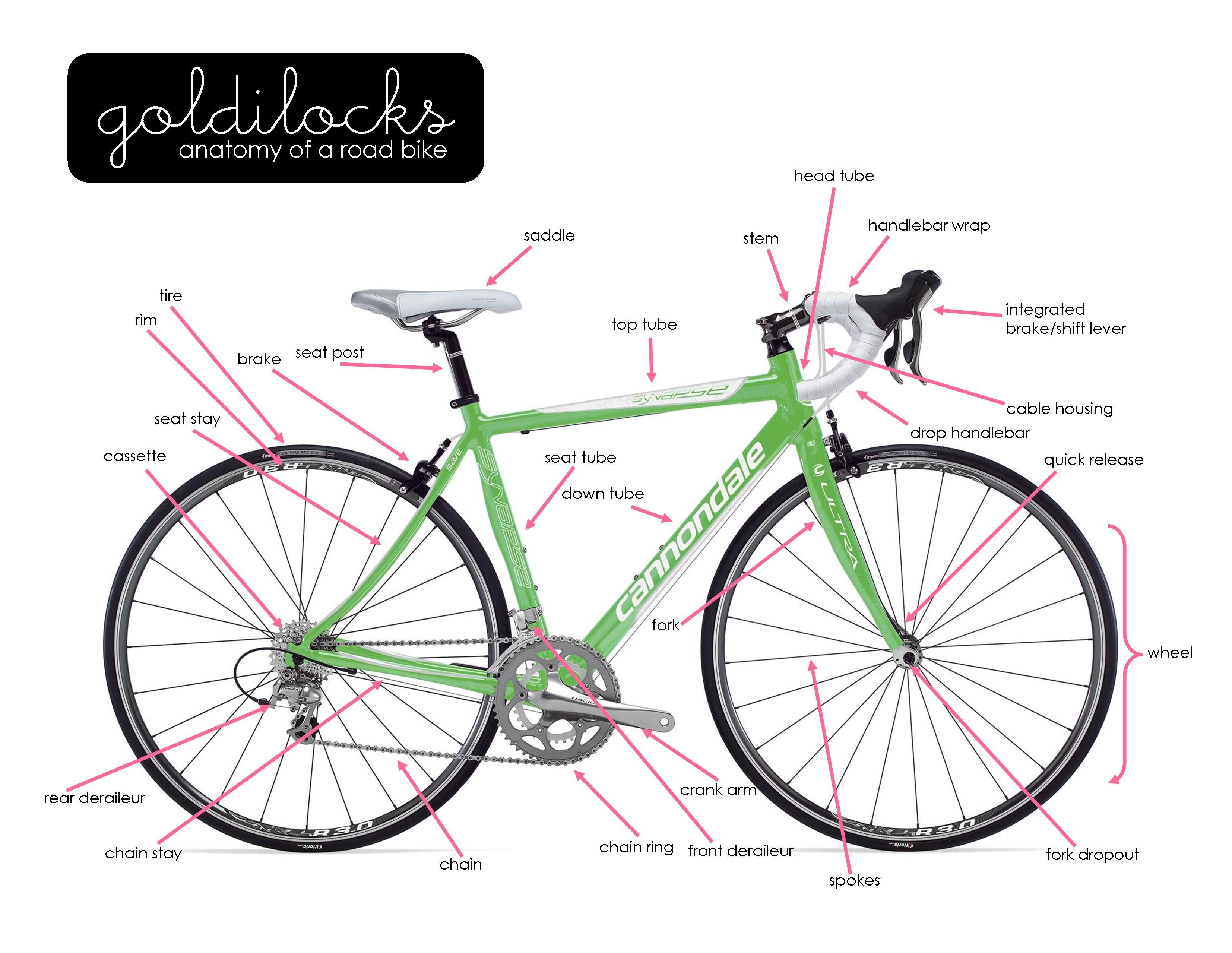 Anatomy of a Bike | Goldilocks Women Only Bike Ride | Health and ...
