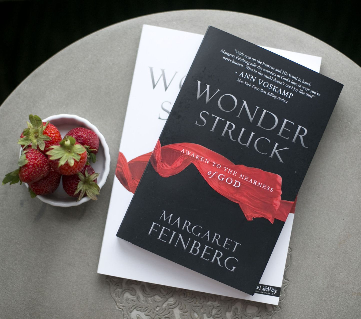Wonderstruck Book and Workbook Combination | Small group bible ...