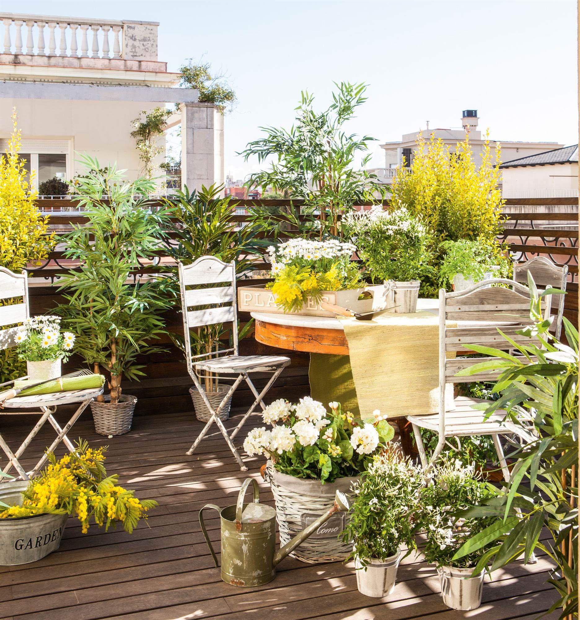 terraza con plantas aromaticas y muebles metalicos_00381003