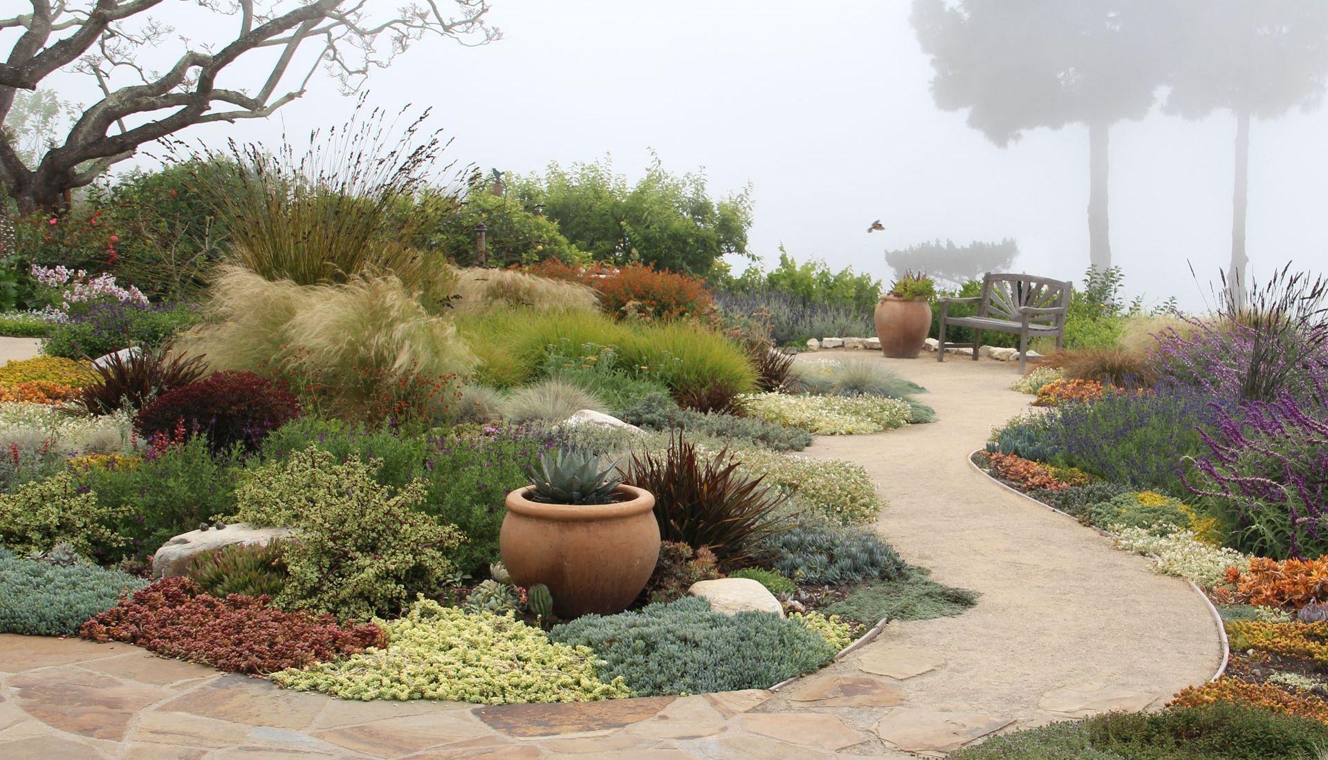 Bliss Garden Design Dry Garden Garden Design Dry