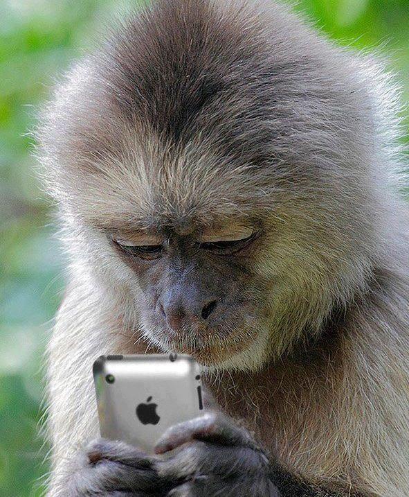 scimmietta..anke a me farebbe molto piacere...kmq allora sento sara