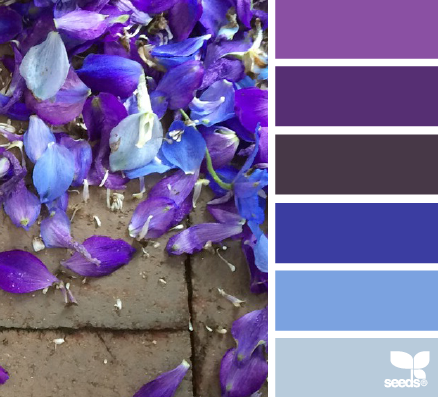 COLOURS: Blues and purples for inspiration