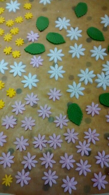 Flowers and leaves for the cake