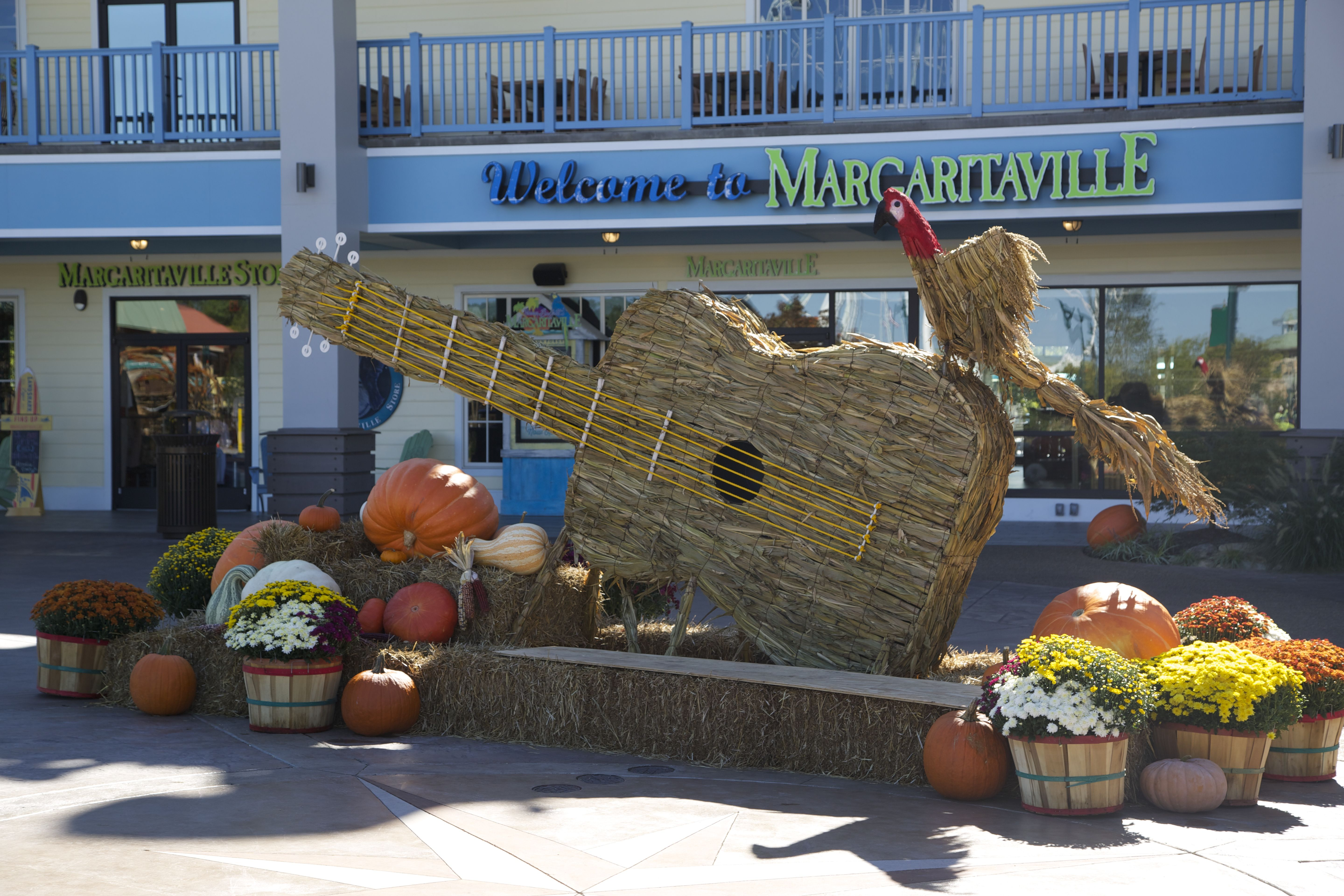 Harvest Decorations at Margaritaville on The Island