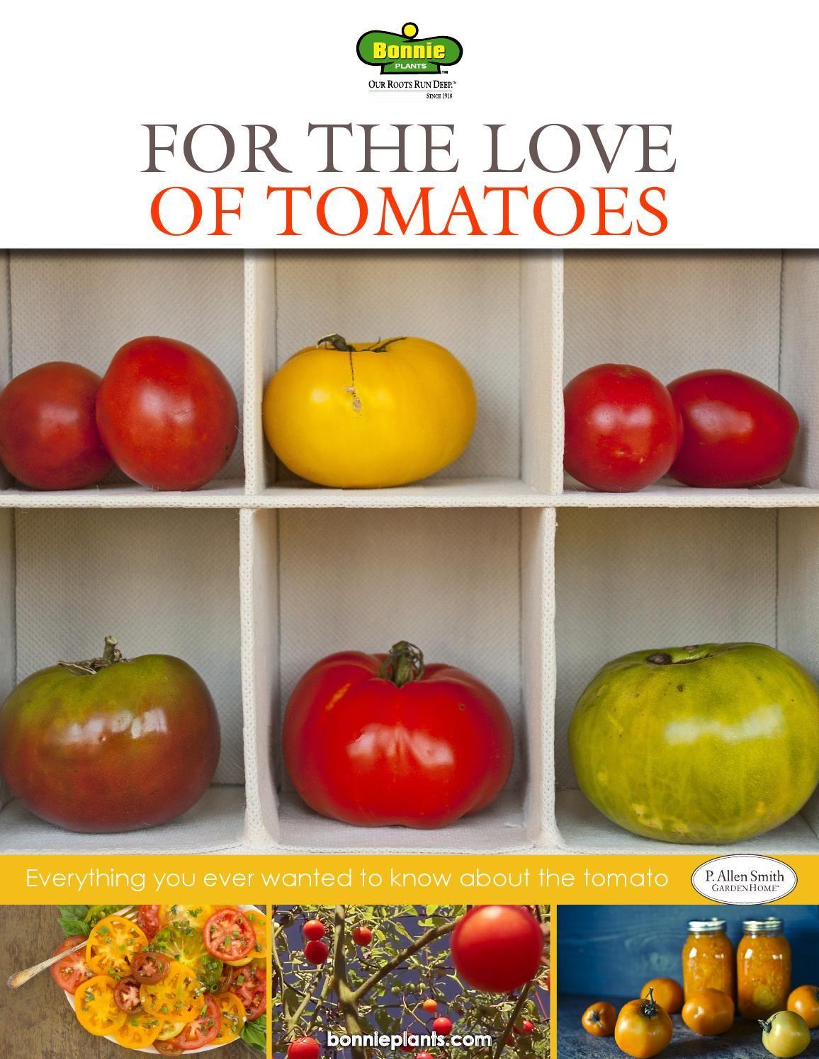 Bonnie Tomato Ebook Spring 2015 Tomato Trellis Types Of 640 x 480