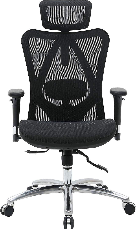 Sihoo Ergonomic Office Chair, Computer Desk Chair, 3D