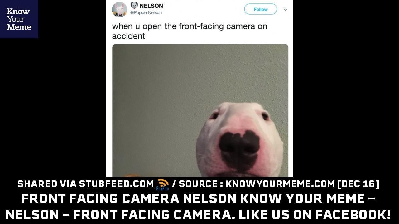 8ff29665692a0a Front Facing Camera Nelson Know Your Meme ... Publication from knowyourmeme.com   memes  meme  stubfeed  stubfeedmemes - stubfeed.com memes ...